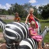 Next time we travel by ZEBRA!