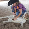 "Given learning to tie (or ""hobble!"") a goat"