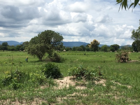 Moyo District - our new home